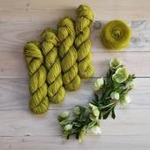 KIWI est disponible sur la boutique !  Magnifique vert acide pétillant. J'espère qu'il vous plaît.  #latelierteinture #laineteintealamain #handdyedyarn #jura #yarnaddict #tricot #yarninspiration #yarnlove #yarn #skein #greencolor